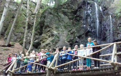 Aktivnosti v šoli v naravi